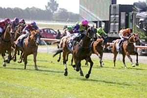 Gobstopper winning the New Zealand Cup