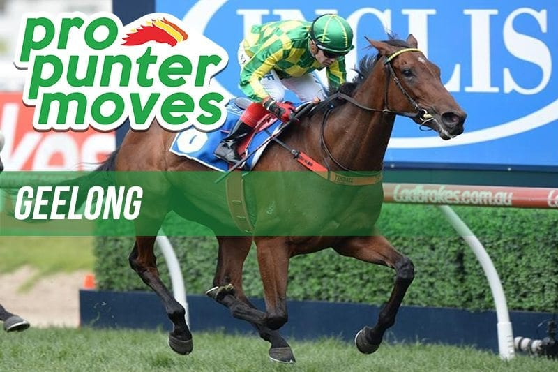 Geelong Market Movers