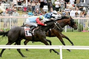 Hello It's Me winning the G2 Royal Stakes