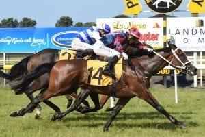 Larima winning at Taranaki