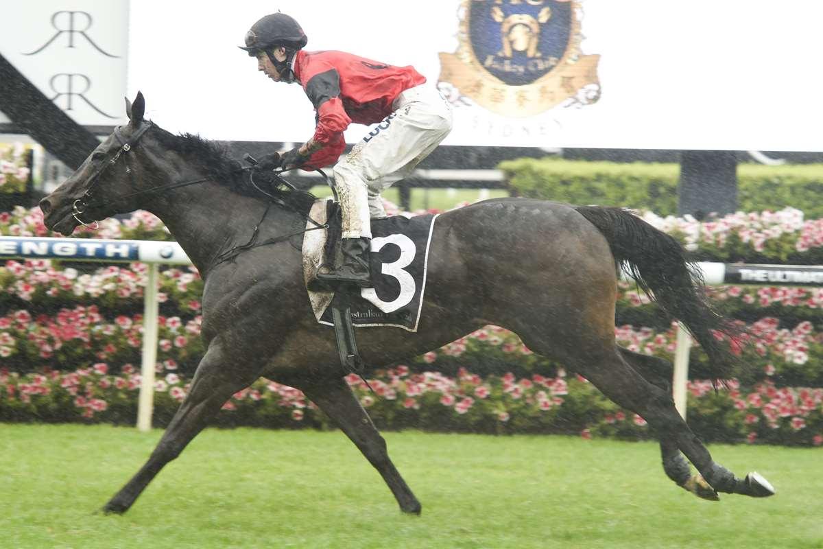 La Diosa winning the Surround Stakes
