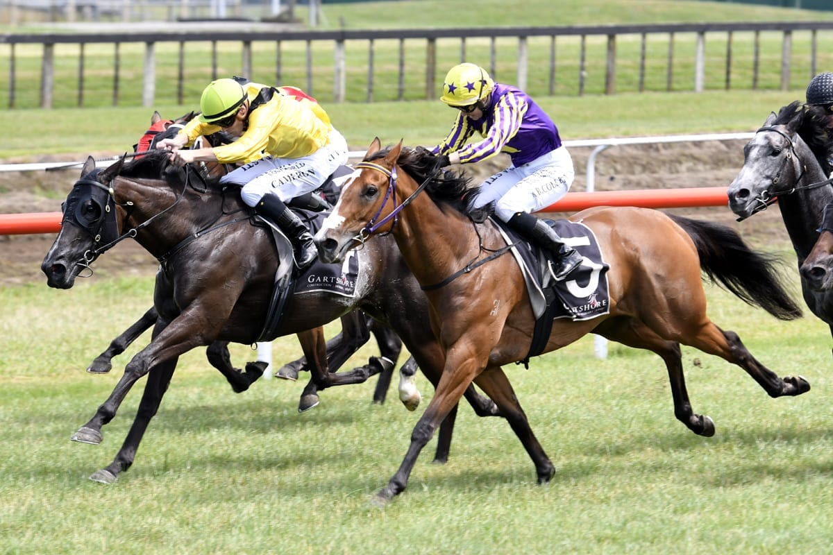 Nailed It (inner) rallies to beat Stylish Attack