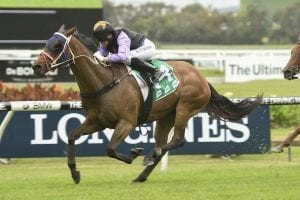 O'Lordy winning a Highway Hcp at Rosehill