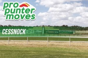 Cessnock firmers & drifters for Tuesday, January 9