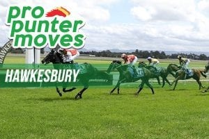 Hawkesbury market movers for Saturday, April 28