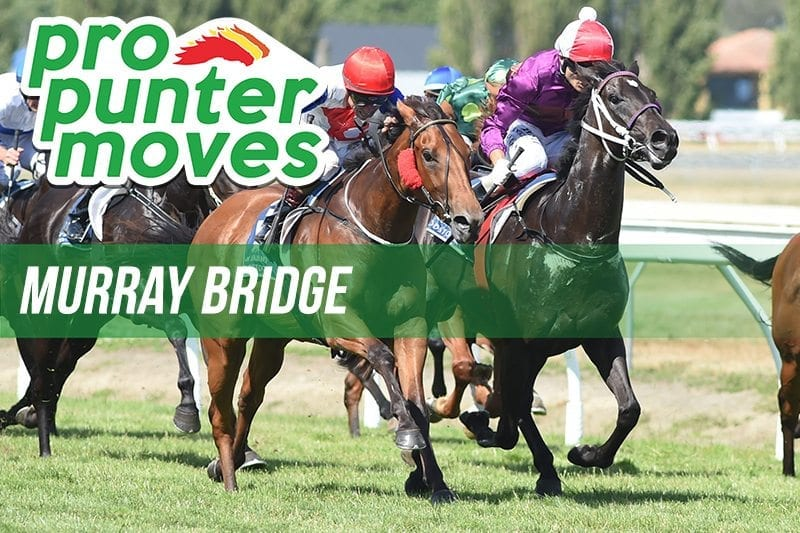 Murray Bridge Market Movers
