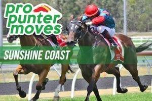 Sunshine Coast Top Racing Tips & Best Bets | Sunday, January 10