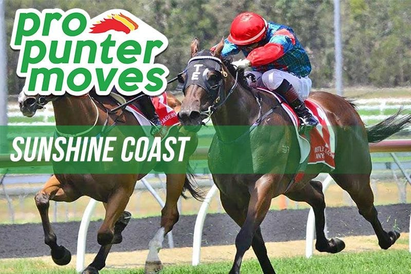 Sunshine Coast Market Movers