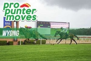 Wyong market movers for Wednesday, April 4