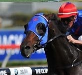 2012 Golden Slipper Winner