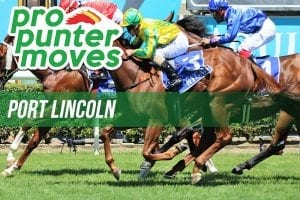 Port Lincoln tips and best bets for January 10, 2020