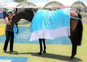 Problem Solver won the Magic Millions Maiden