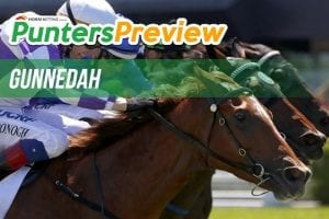 Gunnedah Cup Day Betting Preview, Tips & Odds   Sunday, May 30
