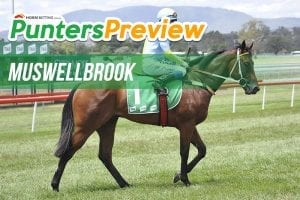 Muswellbrook tips & full form for Friday, January 12