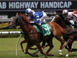 Newtown Bluebag win Randwick Highway Handicap