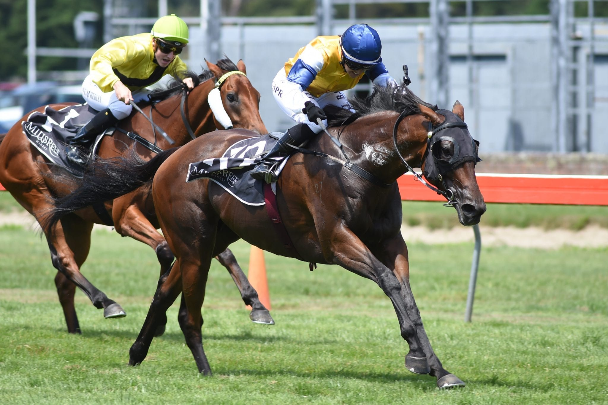 Stolen Dance winning the Group 1 Thorndon Mile