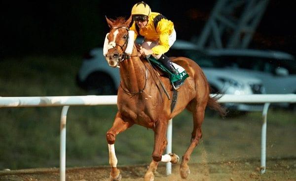 Sky Jockey & Richard Mullen