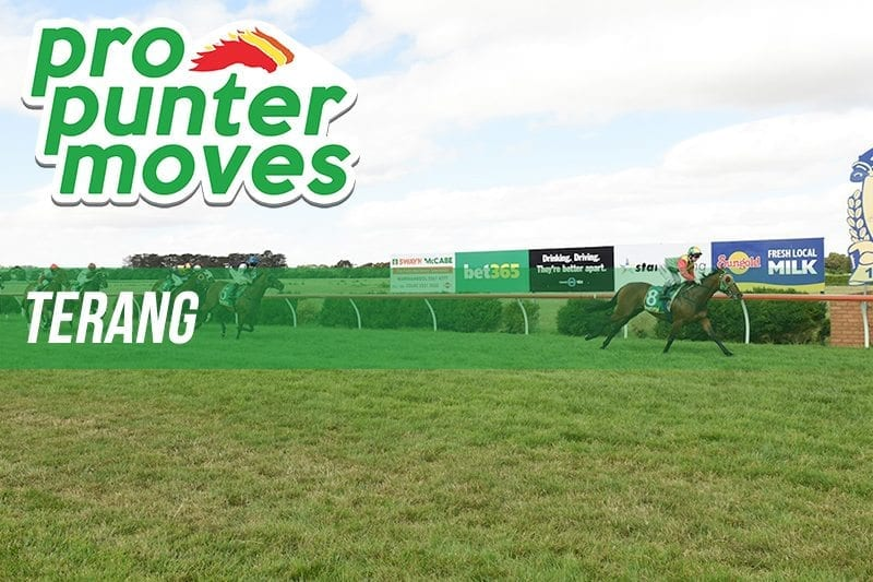 Terang Market Movers
