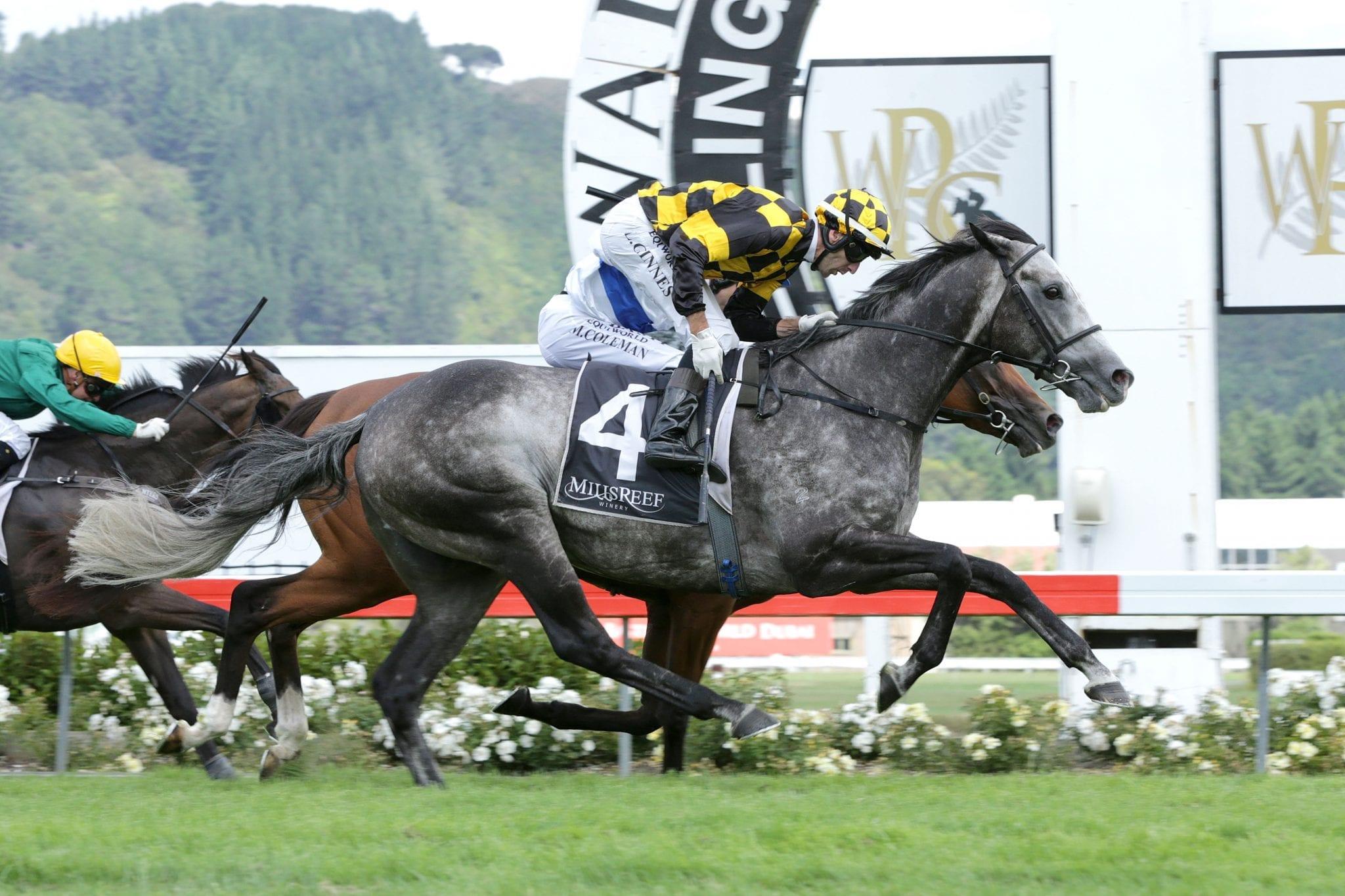Von Tunzelman winning the Trentham Stakes