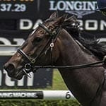 Golden Slipper Winner She Will Reign