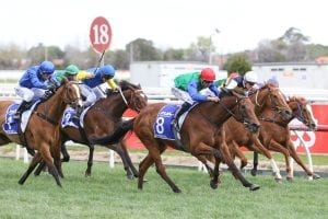 Bonneval at the Underwood Stakes