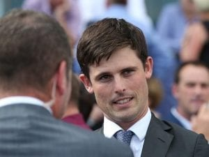 Flemington return for improved Sanglier