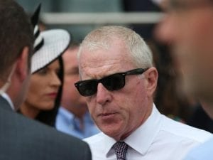 Price pair tackle tough C S Hayes Stakes