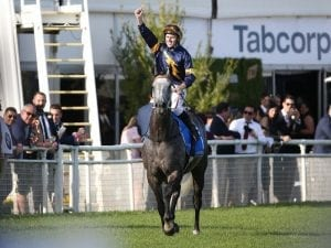 Chautauqua nominated for Oakleigh Plate