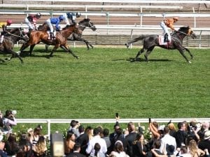 Ace High continues Group 1 path toward Hobartville Stakes
