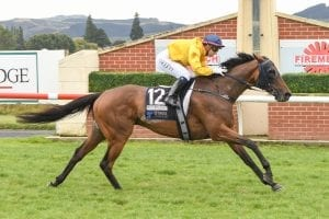 Pendleton wins Dunedin Gold Cup