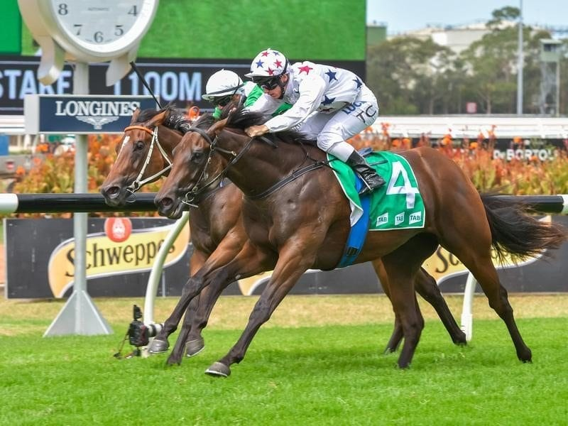 Sunlight wins the Silver Slipper Stakes at Rosehill