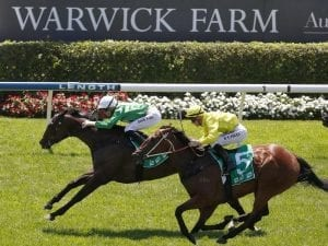 Sheikha notches classy win at Warwick Farm