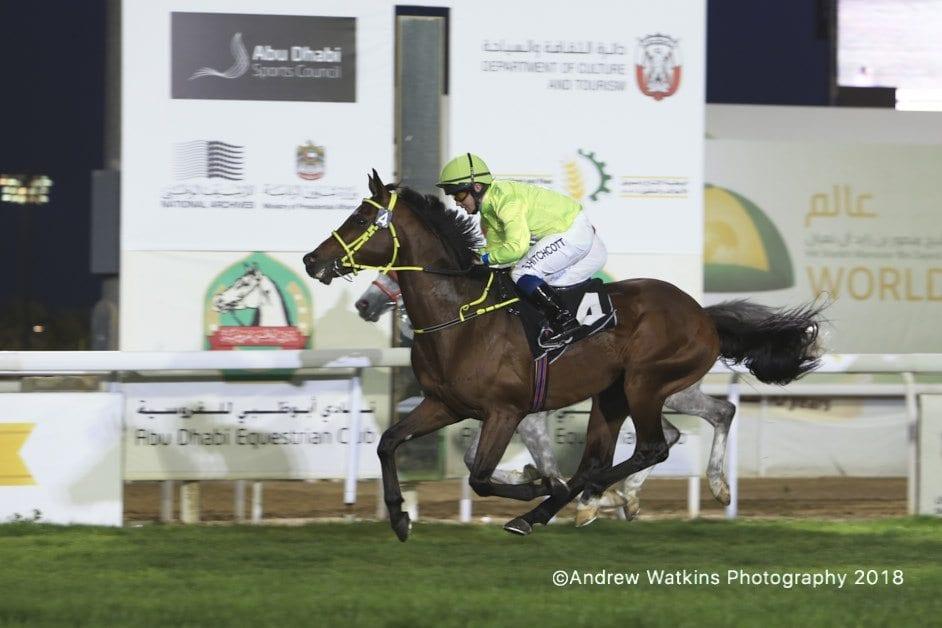 Al Tiryaq Wins Abu Dhabi Equestrian Club Gold Cup Horse