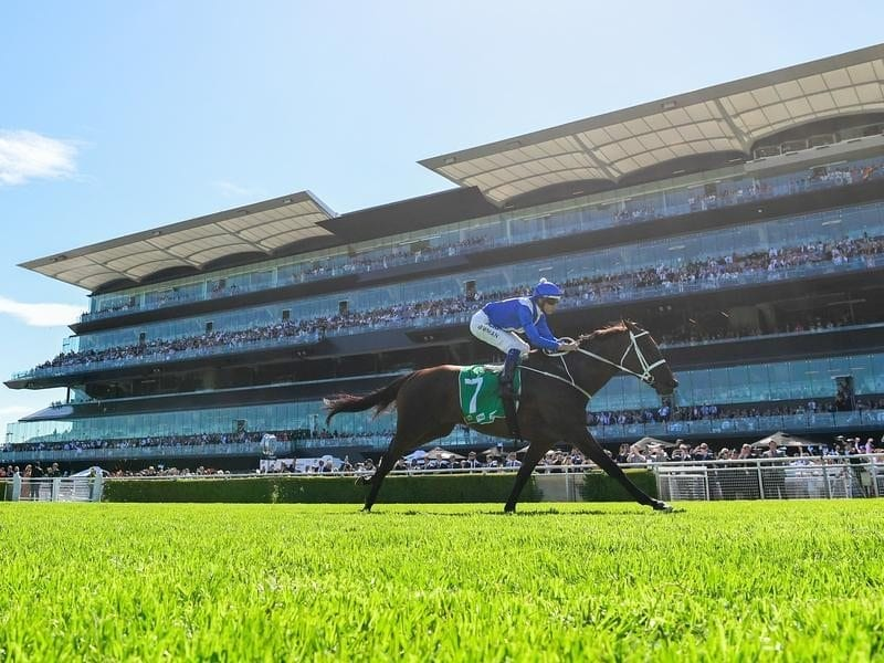 Winx wins at Randwick for 23rd straight victory