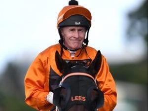 Lloyd gets 100 winners in Queensland