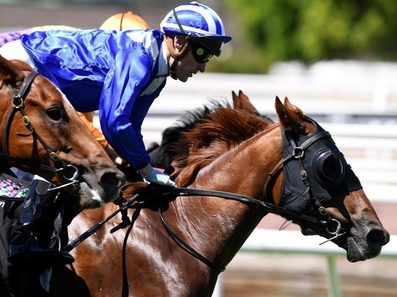 Nomothaj wins at Flemington