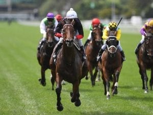 Quilista romps to Sapphire Stakes victory