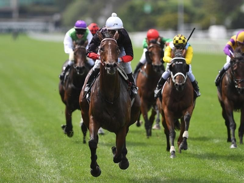Mark Zahra rides Quilista (second from left) to victory