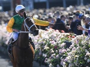 Flemington mounting yard has been extended