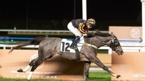 Shillong Crowned King Of Jebel Ali Sprint