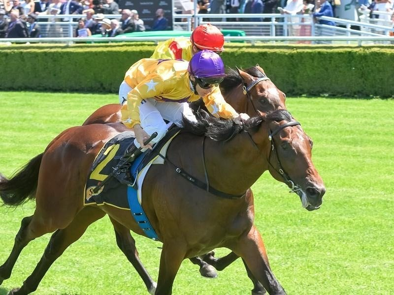 Santos winning at Randwick.