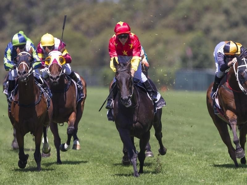 Auvray wins race 2, the Harrolds Sky High Stakes.
