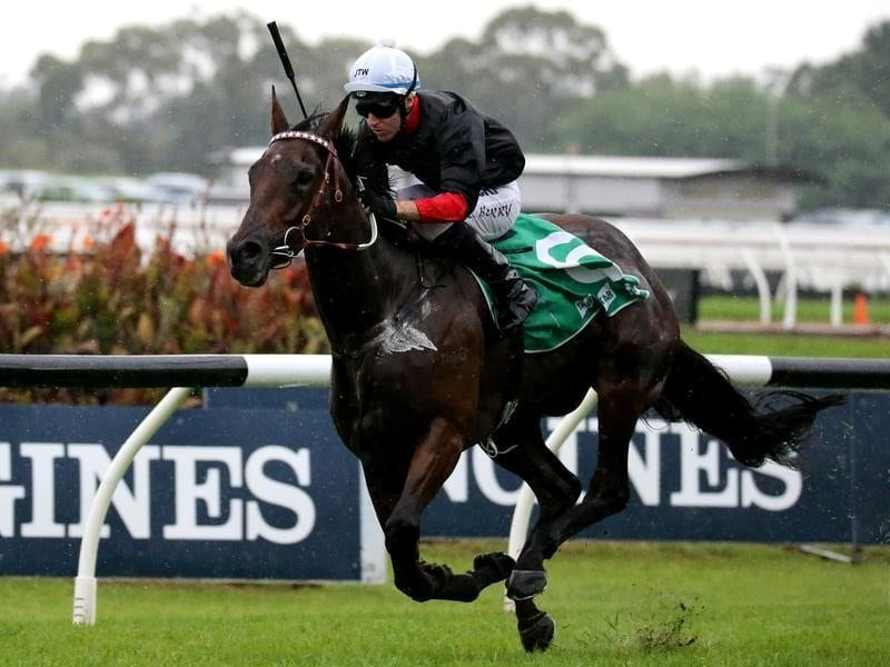 Jockey Tommy Berry riding Quilista