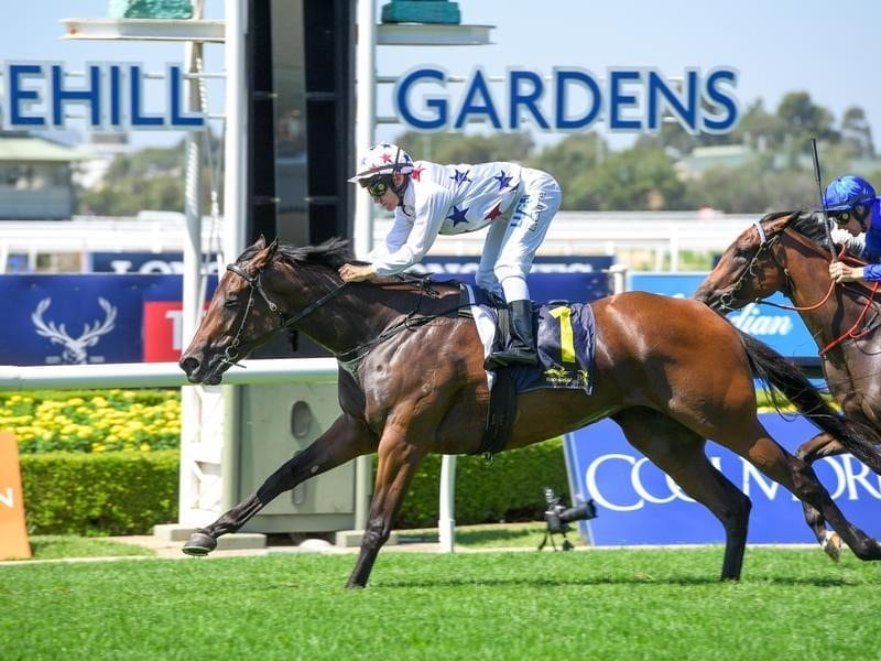 Sunlight wins at Rosehill.