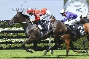 Seabrook wins the Group 1 Champagne Stakes