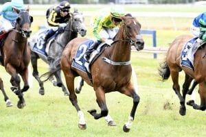 Easter hopes rest solely with Seventh Up