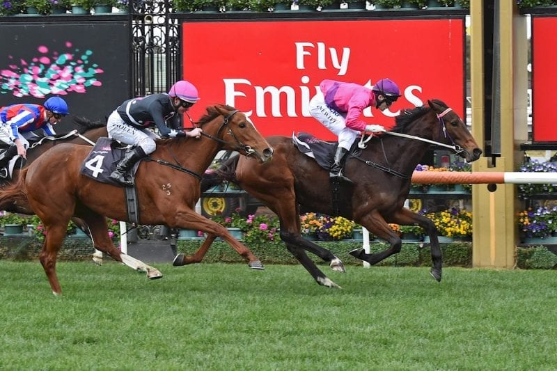 how to win on horse racing in australia