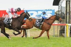 Murtoa racing tips, top odds & quaddie   Monday, July 12