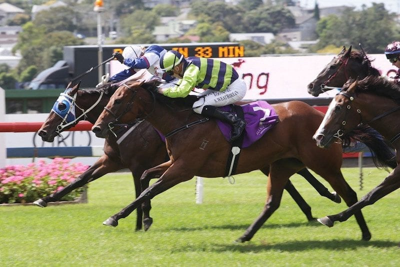 Yearn to avoid to Group 1 Thoroughbred Breeders' Stakes