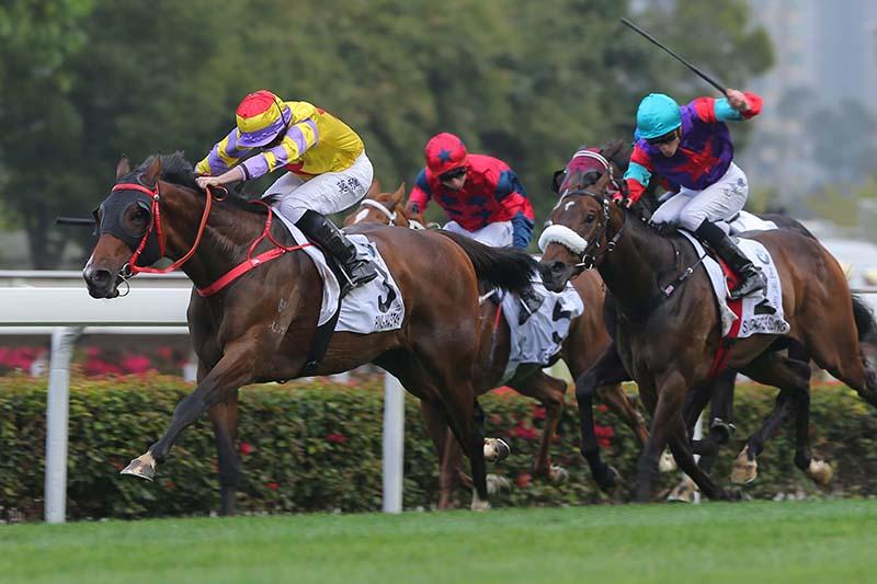 Ping Hair Star wins Hong Kong Derby